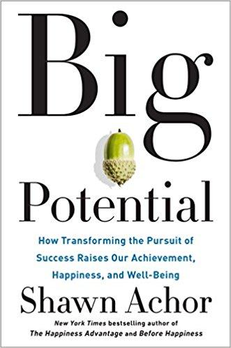Big Potential: a Book Review | ExpandBeyondYourself